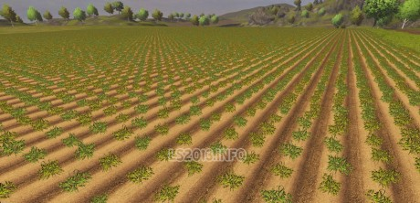 Disabling withering Crops 460x222 Disabling withering Crops