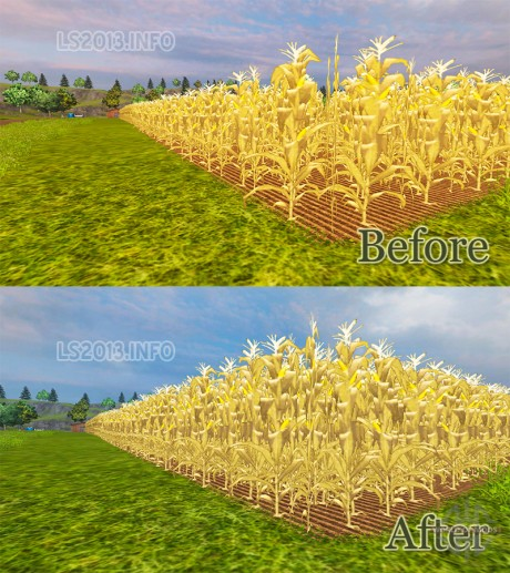 The increase in Maize Yield 460x517 The increase in Maize Yield